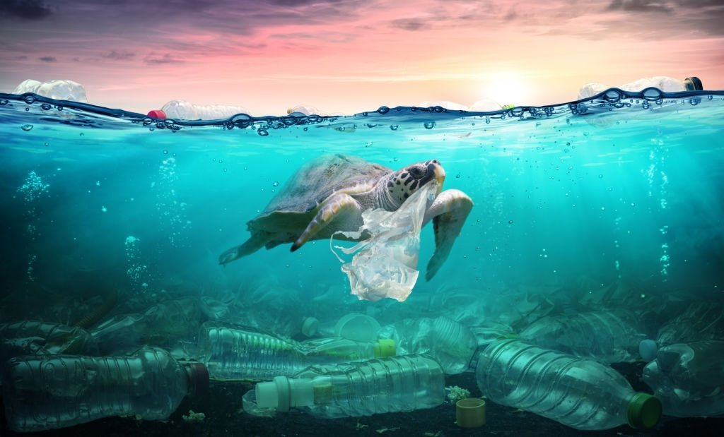 Fatos Assustadores Sobre a Poluição Plástica